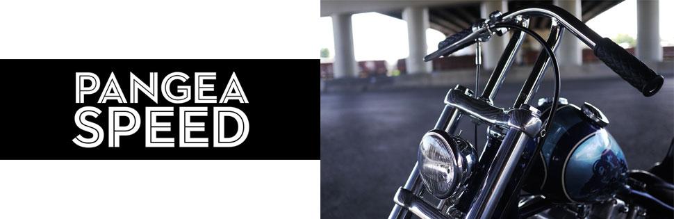 pangea-speed-brand-banner.jpg